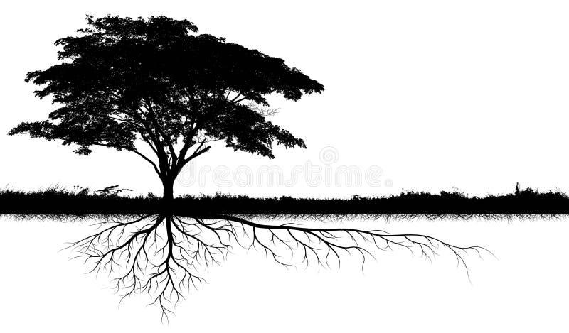 Silhuetas grandes da árvore ilustração stock