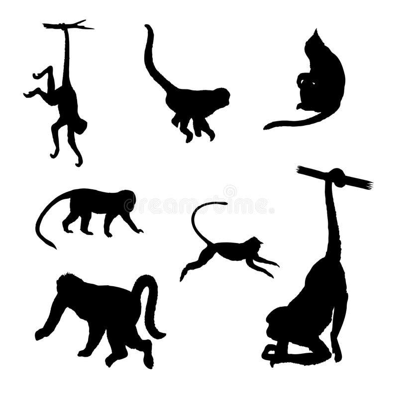 Silhuetas isoladas do vetor do macaco ilustração stock