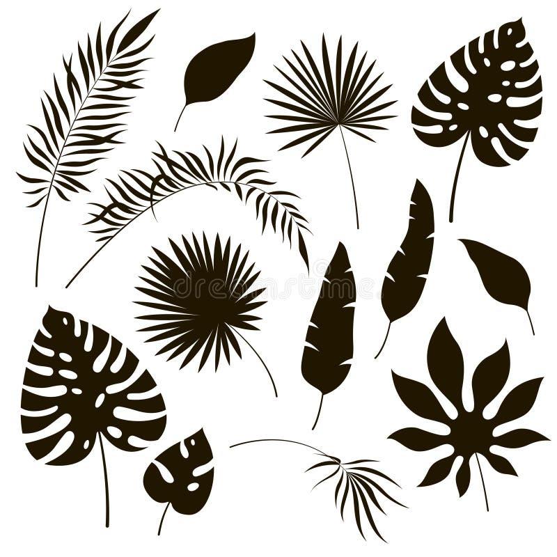 Silhuetas tropicais das folhas Banana exótica da samambaia real da palma do philodendron da folha da selva preta Ilustração tropi ilustração royalty free