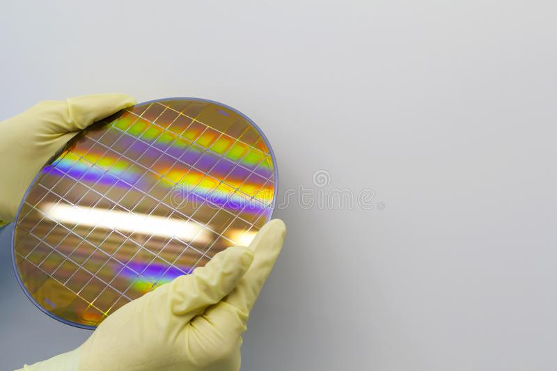 Silicon Wafer is held in the hands by gloves - A wafer is a thin slice of semiconductor material, such as a crystalline silicon,. Silicon Wafer with microchips stock image