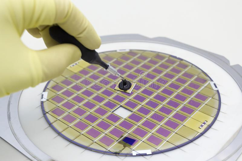 Silicon Wafer With Microchips Fixed In A Holder With A Steel
