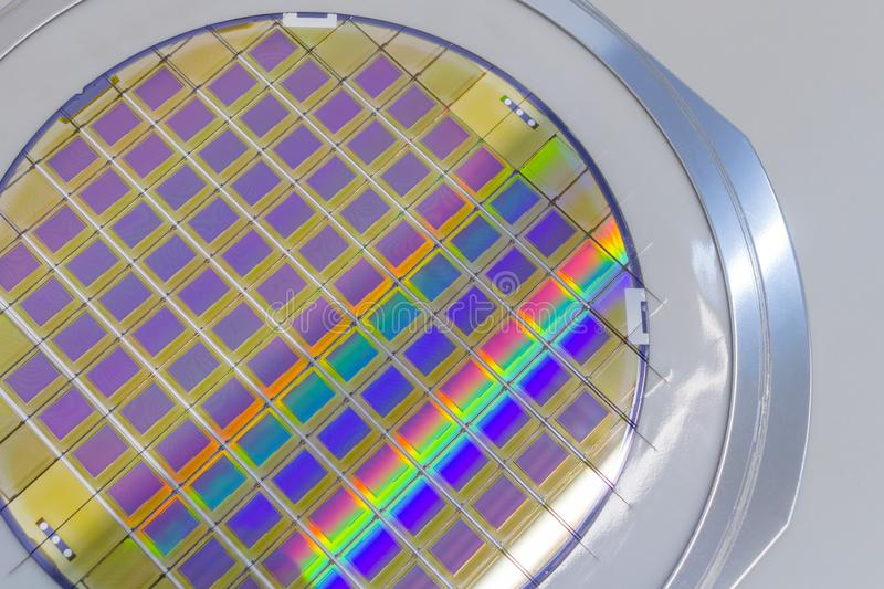 Silicon wafer with microchips fixed in the holder with steel frame on the grey background and ready for process. Silicon Wafers with microchips - used in royalty free stock image