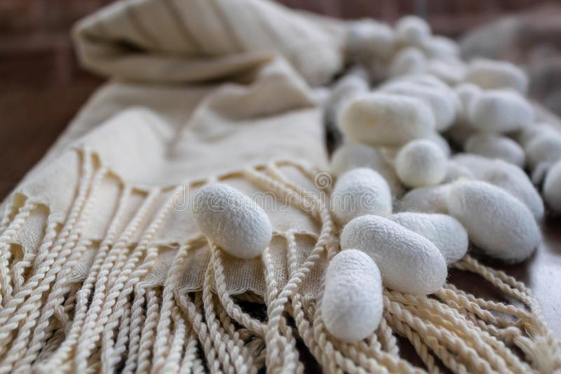 Silk fabric pongee white shawl and silk cocoons royalty free stock photos