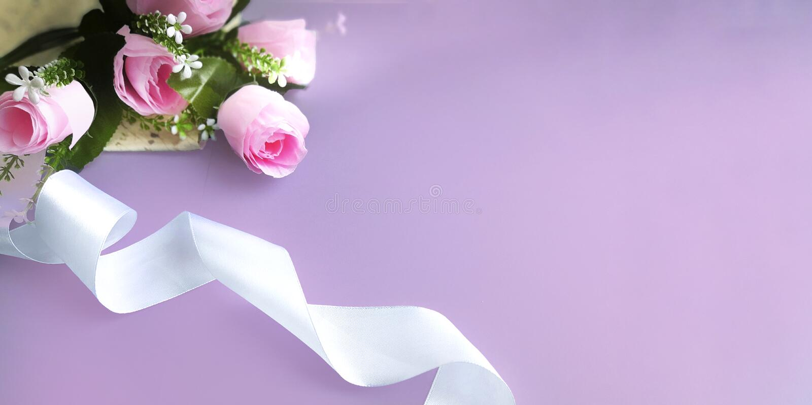 Silk ribbon, pink rose on lilac background. Mothers day, Womens day, Valentines day, birthday or wedding concept. Silk ribbon, pink rose on lilac background stock image