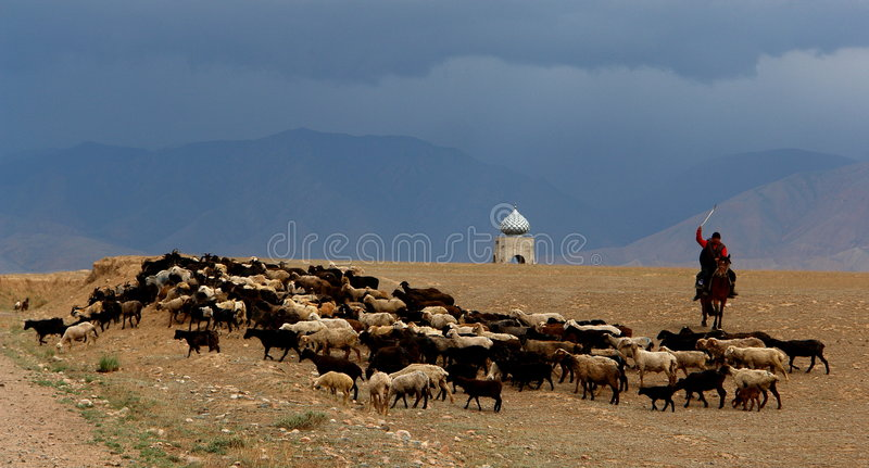 Silk Road stock photos