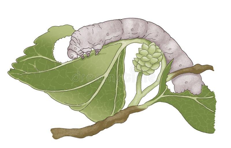 silkworm ilustración del vector