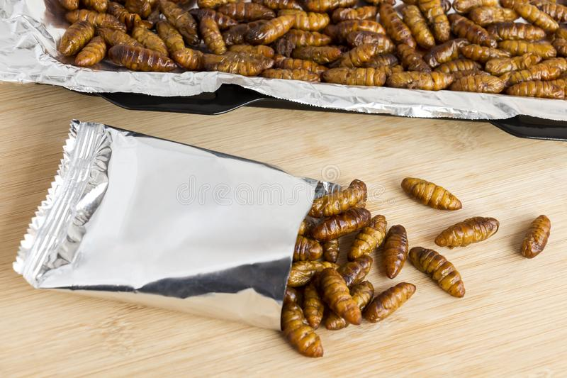Silkworm Pupae insects for eating as food. Chrysalis silkworm deep-fried or baked crispy snack in a foil wrap ready to eat and in. Baking tray on wood royalty free stock images
