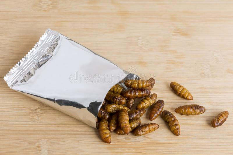 Silkworm Pupae insects for eating as food. Chrysalis silkworm deep-fried or baked crispy snack in a foil wrap ready to eat on wood. Background, it is good royalty free stock images