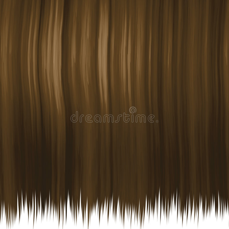Free Silky Brown Hair Stock Images - 4025794