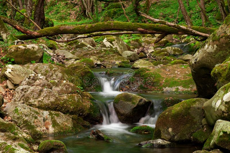 Silky cascades over mossy rocks in Malabotta Nature Reserve stock images