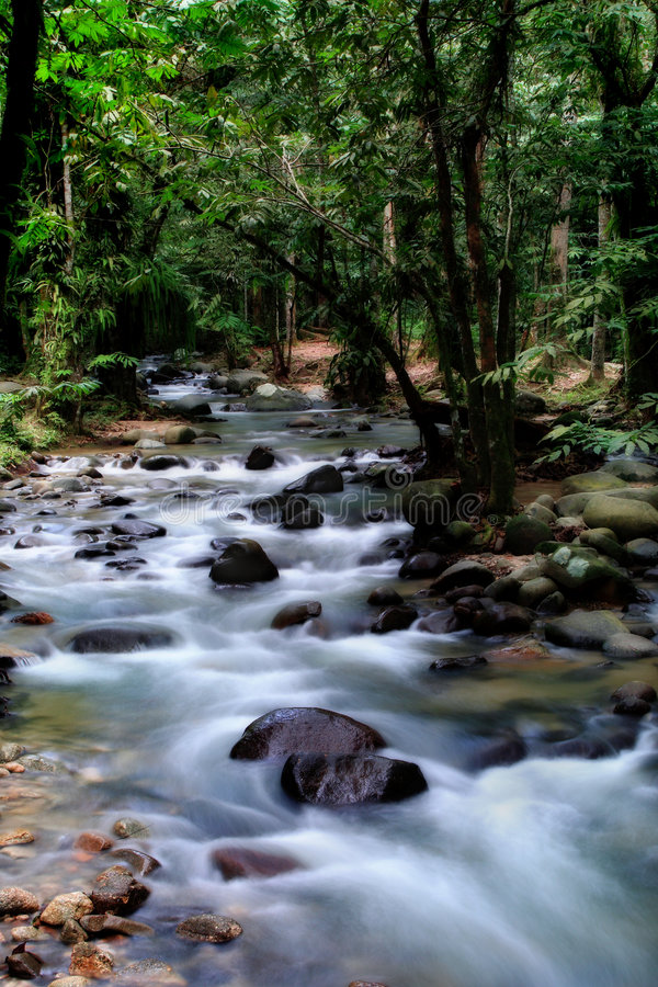 Silky Creek - Long Exposure Stock Images