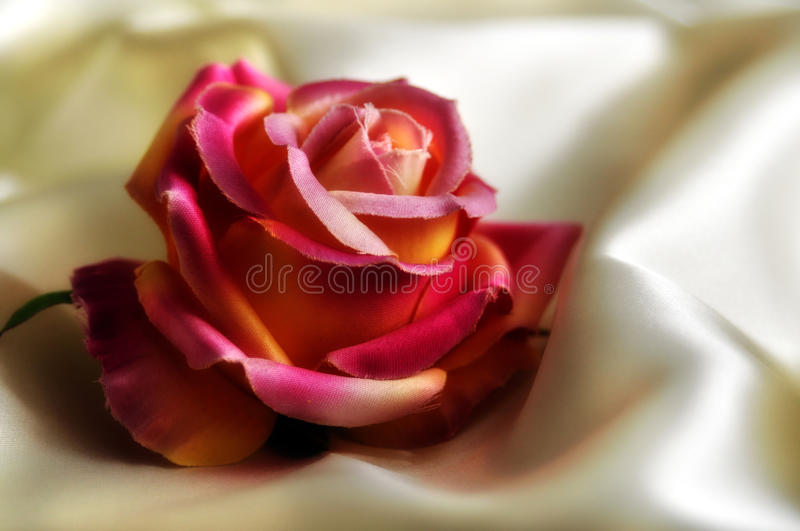Download Silky rose stock image. Image of fabric, cloth, romantic - 27733379