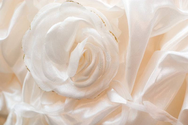 Silky rose royalty free stock image