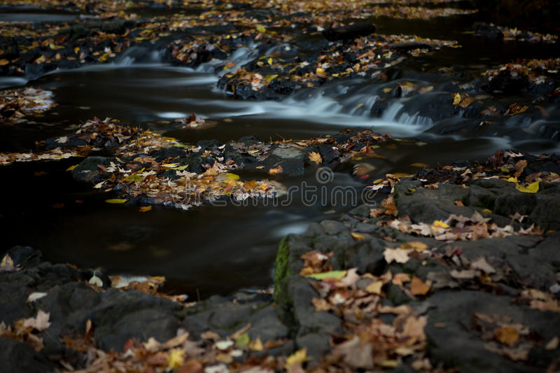 Silky Stream in Autumn. Long exposure shot of a silky New England stream in mid autumn shot is shallow depth of field to emphasize the soft focus