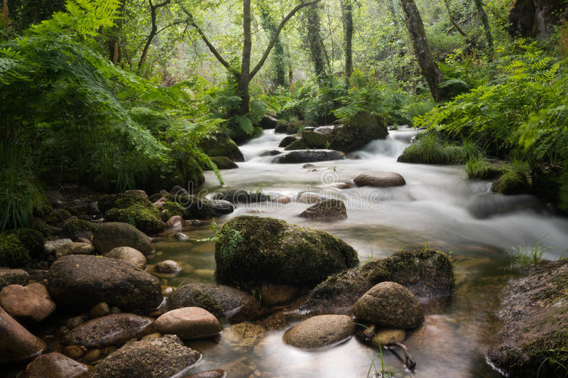 Silky wodna rzeka zdjęcia stock
