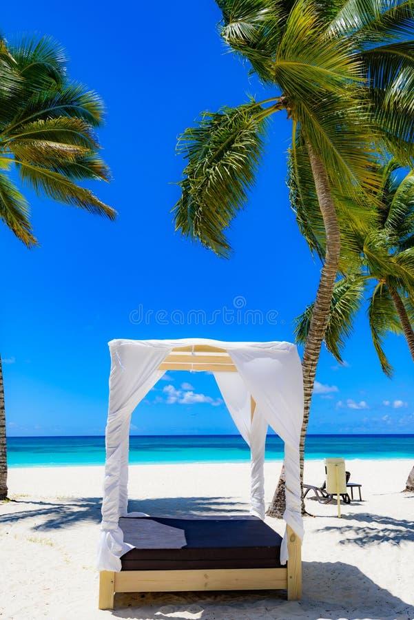 Sillón de Palm Beach foto de archivo