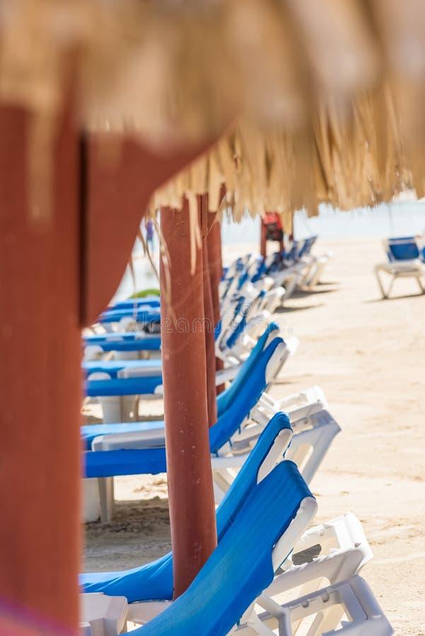 Sillón de Palm Beach imágenes de archivo libres de regalías