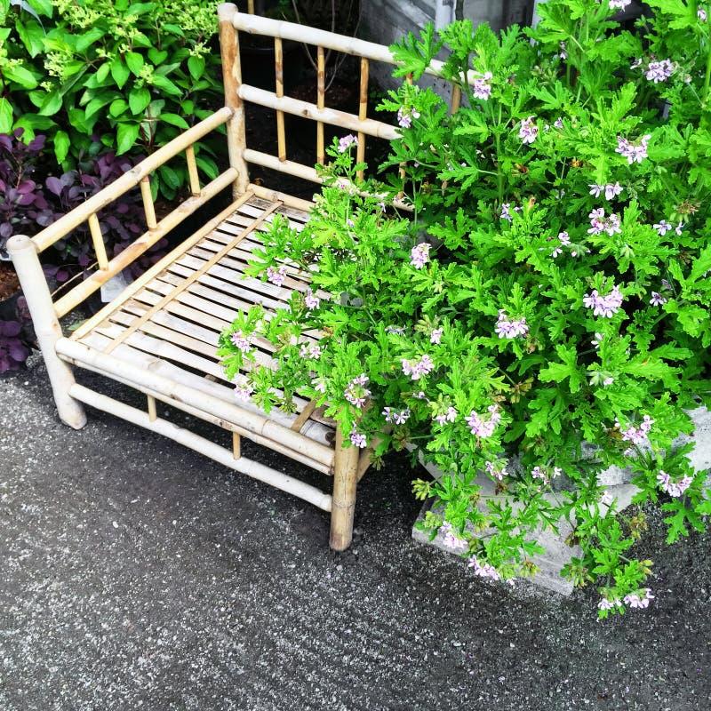 Silla de bambú y plantas florecientes fotos de archivo