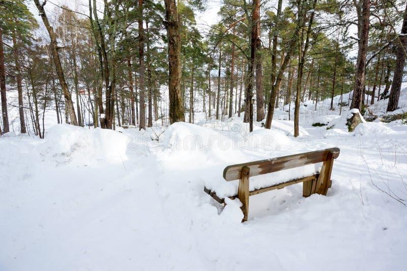 Silla de madera nevada en parque imagenes de archivo