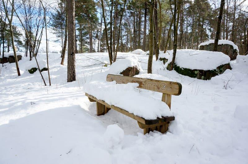 Silla de madera nevada en parque fotos de archivo libres de regalías