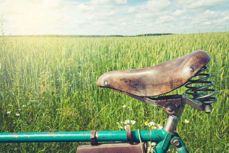 Silla de montar marrón de cuero de la bicicleta Día de verano para el viaje outdoor primer fotografía de archivo