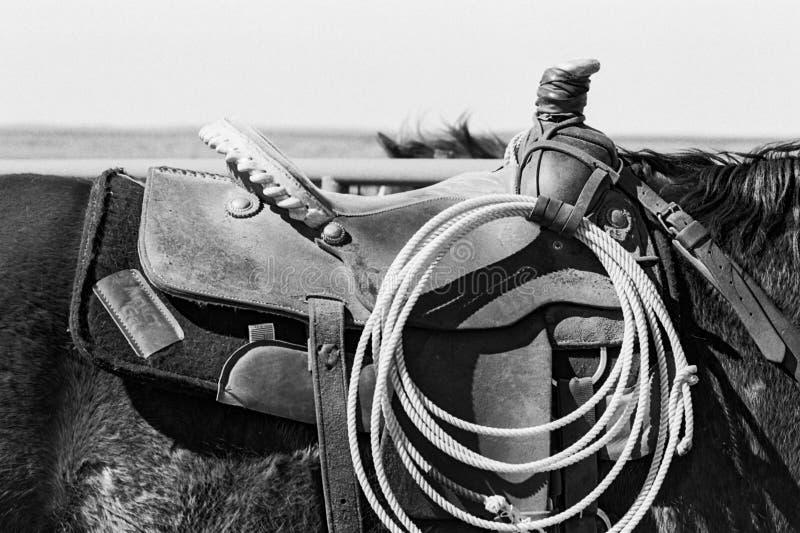Silla de montar y lazo foto de archivo libre de regalías