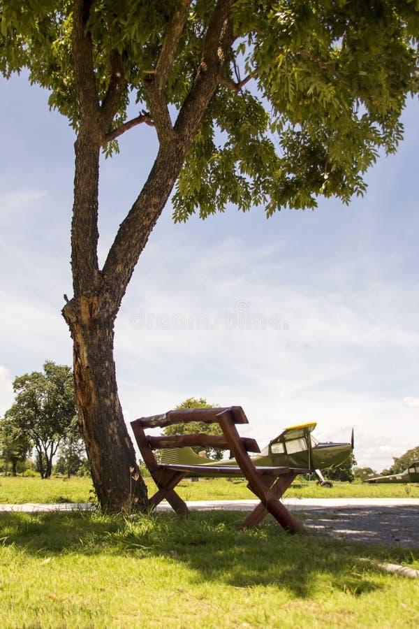 Silla debajo del árbol fotografía de archivo libre de regalías