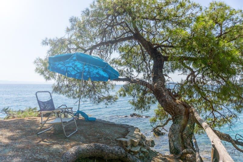 Silla y paraguas azul en roca con una agua del árbol y de mar en fondo imagen de archivo libre de regalías