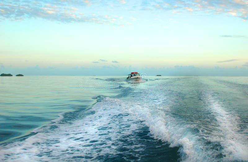 Sillage de bateau photos libres de droits