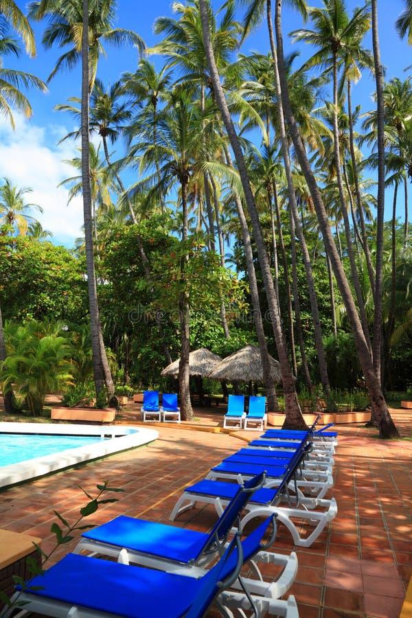 Download Sillas De Cubierta Debajo De La Piscina Cercana Imagen de archivo - Imagen de natación, agua: 44850905