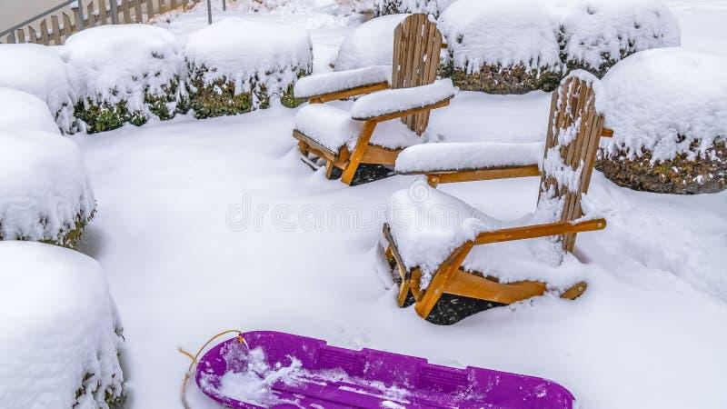 Sillas de madera y arbustos del trineo púrpura del panorama dentro de un jardín nevoso en la alba Utah foto de archivo libre de regalías