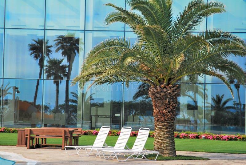 Sillas de playa con reflexiones del árbol de coco fotografía de archivo
