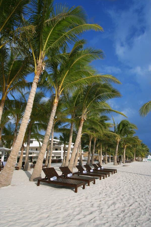 Sillas de playa de madera fotografía de archivo libre de regalías