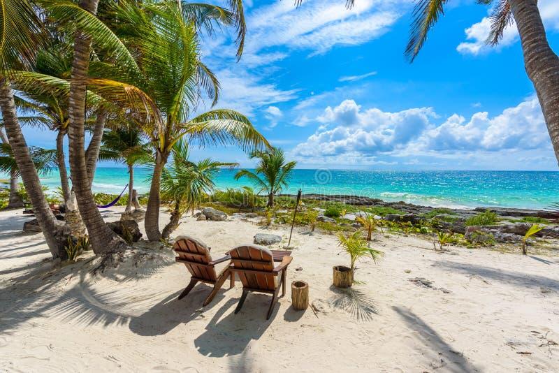 Sillas debajo de las palmeras en la playa del para?so en el centro tur?stico tropical o imagen de archivo libre de regalías