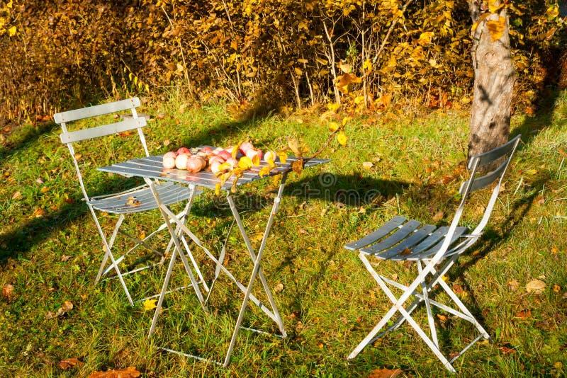 Sillas y tabla viejas de jardín con las manzanas en otoño fotografía de archivo libre de regalías