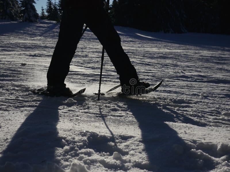 Sillhouette que camina del zapato de la nieve foto de archivo