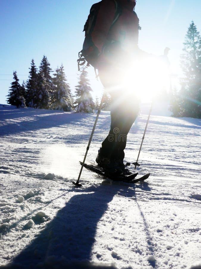 Sillhouette que camina del zapato de la nieve fotos de archivo