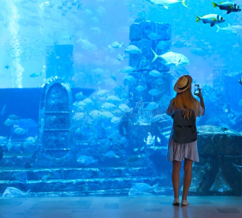 Sillouette van de vrouw die beeld in groot aquarium nemen royalty-vrije stock afbeeldingen