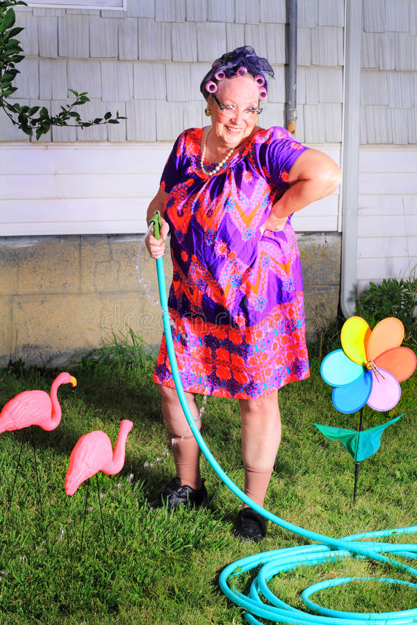Silly granny gardener. A silly happy senior gray haired granny gardener lady wearing cat eye glasses, a muumuu dress, pearls and curlers in her hair, doing yard stock photography