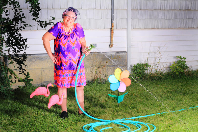 Silly happy granny gardener. Silly image of a happy senior gray haired granny gardener lady wearing cat eye glasses, a muumuu dress, pearls and curlers in her royalty free stock photography