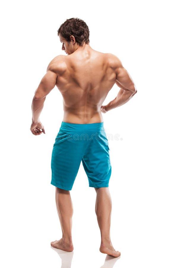 Silna Sportowa mężczyzna sprawności fizycznej modela półpostać pokazuje dużych tylnych mięśnie obrazy royalty free
