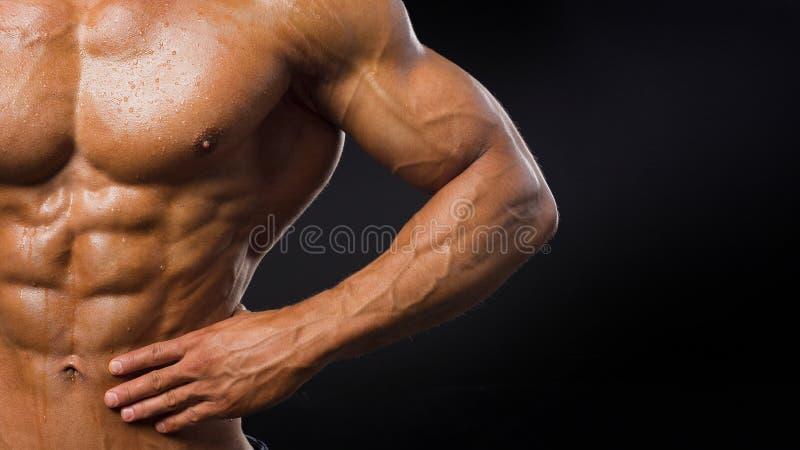 Silnego Sportowego mężczyzny mięśniowy ciało, półpostać sześć paczek abs, doskonalić męscy brzuszni mięśnie zamyka w górę sport,  zdjęcia stock