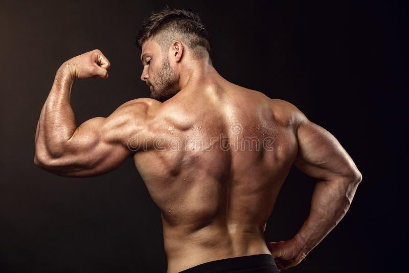Silnej Sportowej mężczyzna sprawności fizycznej Wzorcowi pozuje tylni mięśnie, triceps, obrazy royalty free