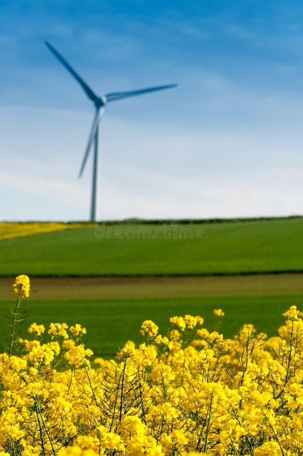 Silnik wiatrowy obraz stock