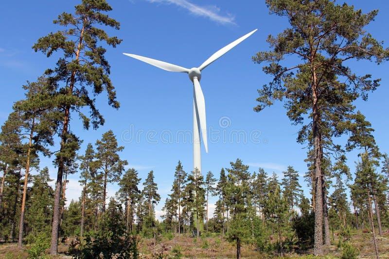 Silnik Wiatrowy w Sosnowym lesie zdjęcia royalty free