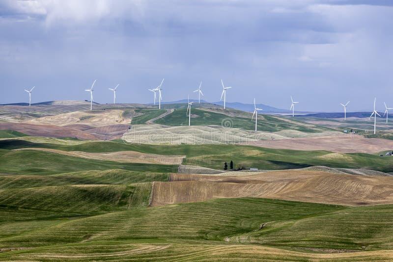Silniki wiatrowi na Palouse fotografia stock