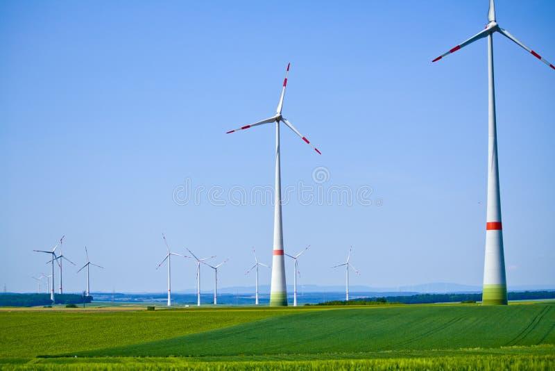 Silniki wiatrowi na pogodnym ranku w półdupkach zdjęcia royalty free