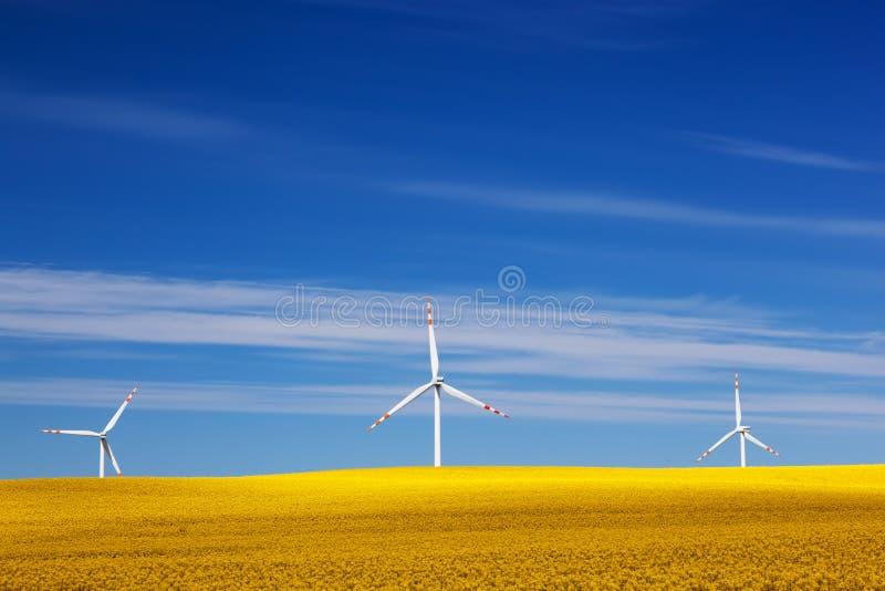 Silniki wiatrowi na wiosny polu Alternatywa, czysta energia fotografia royalty free
