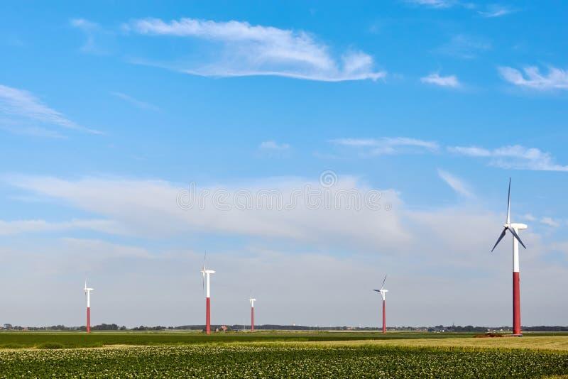 Silniki wiatrowi w rolniczym polu obraz royalty free