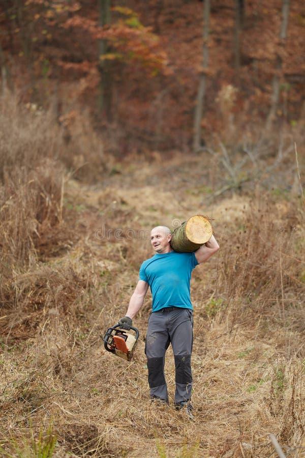 Silny lumberjack przewożenie loguje się ramię obrazy stock